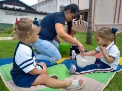 Maternal Dom Bosquinho brincando e aprendendo